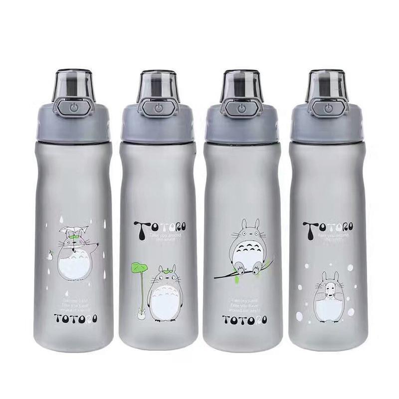 Totoro Water Bottle 500ml/600ml - ghibli.store